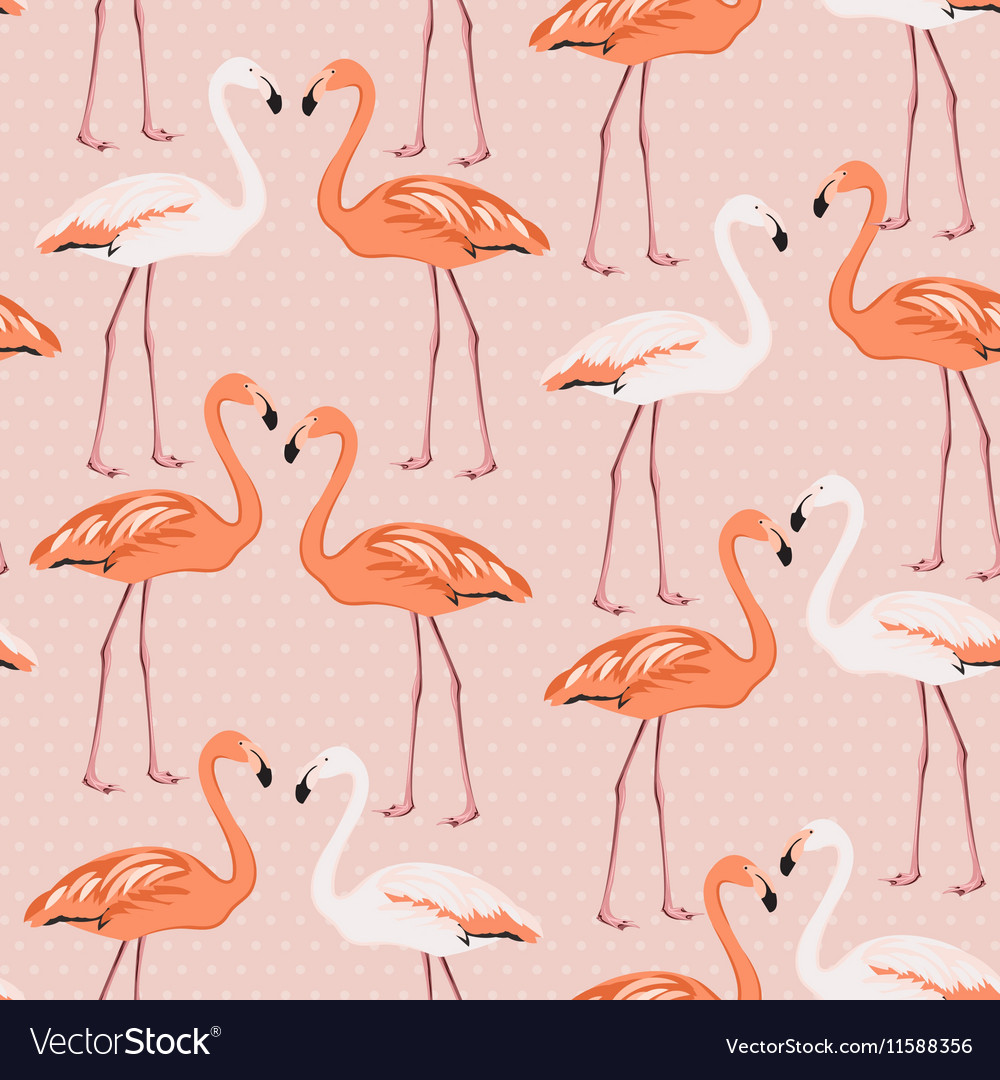 Flamingo birds couple pattern on pink polka dot vector image