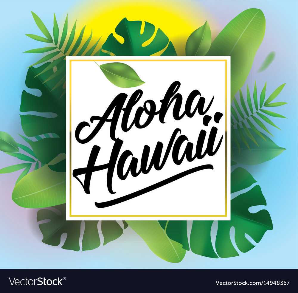 Aloha background for posters and banners vector image