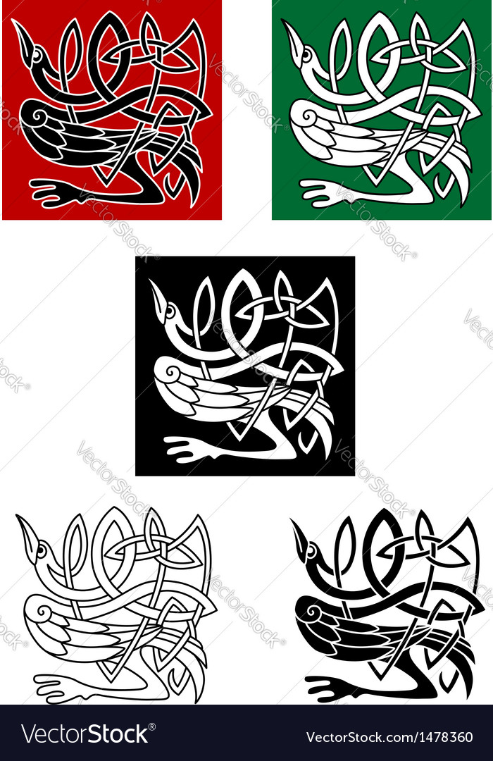 Celtic ornament with heron bird vector image