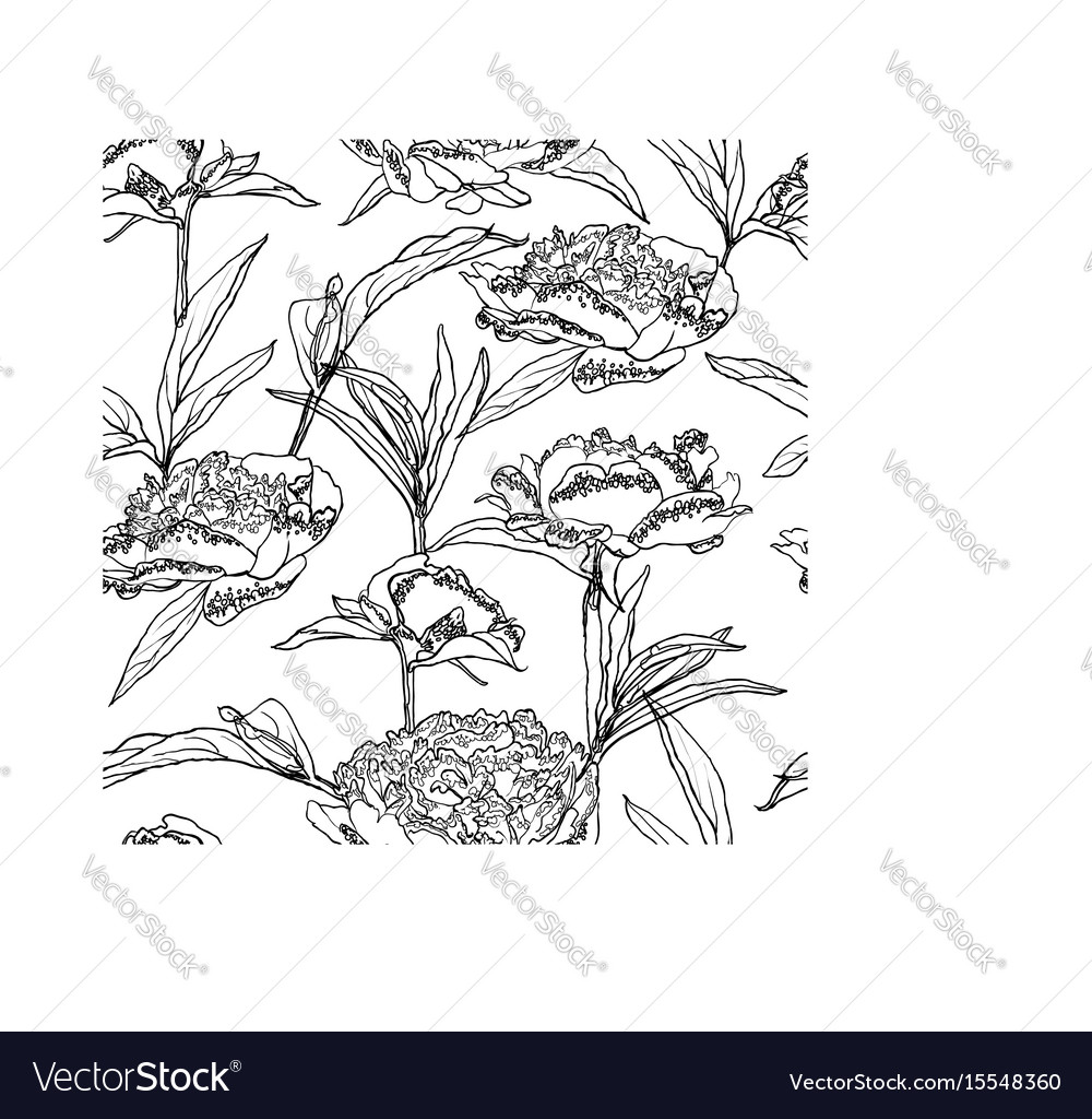 Seamless floral background with peonies coloring vector image
