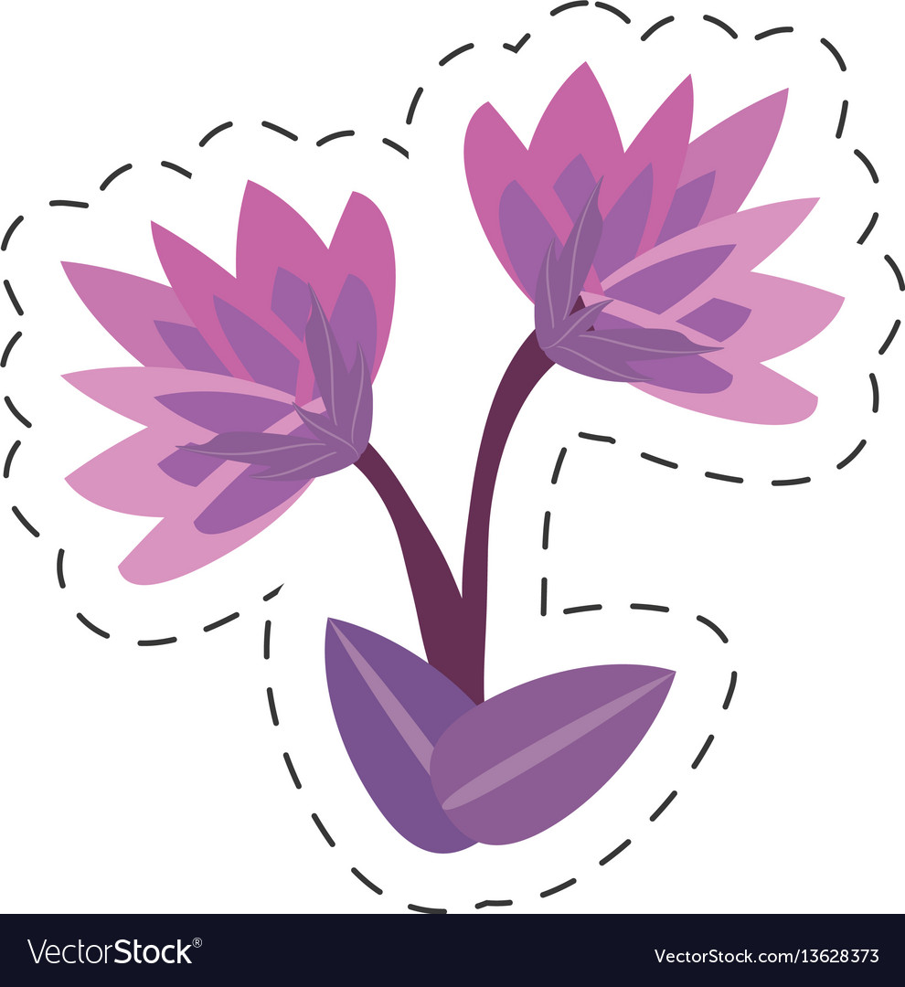 Cartoon lily flower image vector image