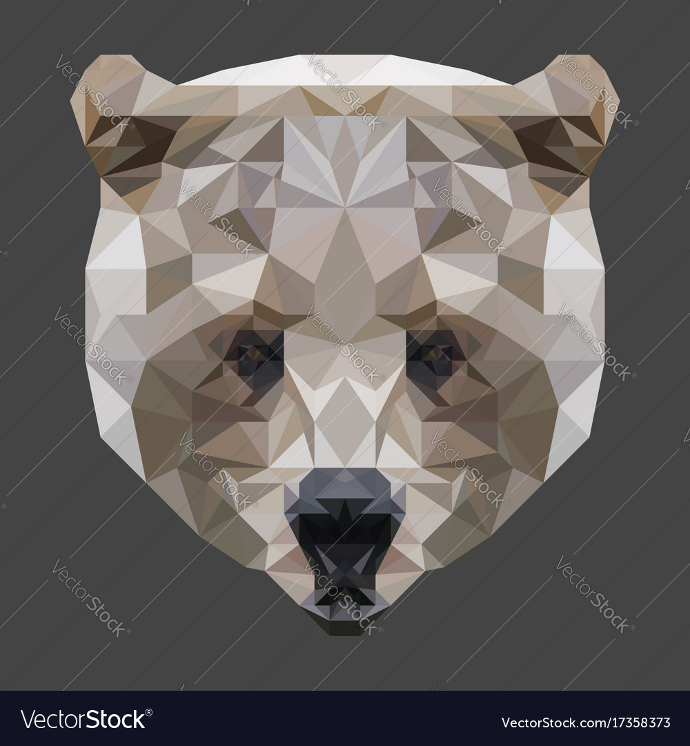 Low poly bear head vector image
