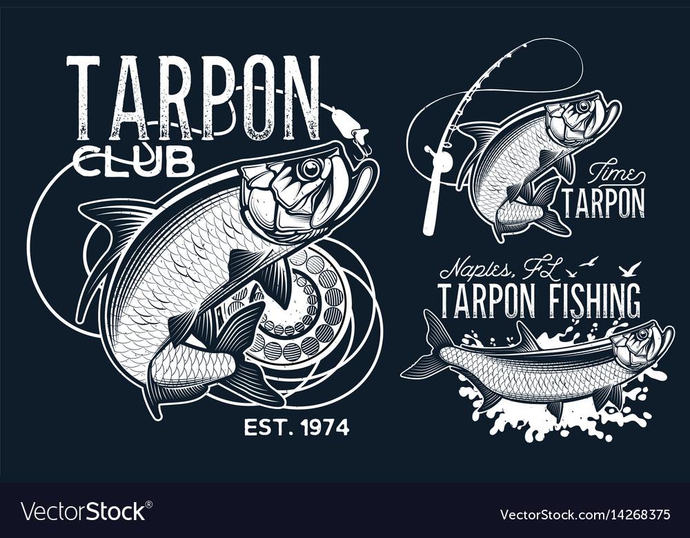 Fisherman dream vector image