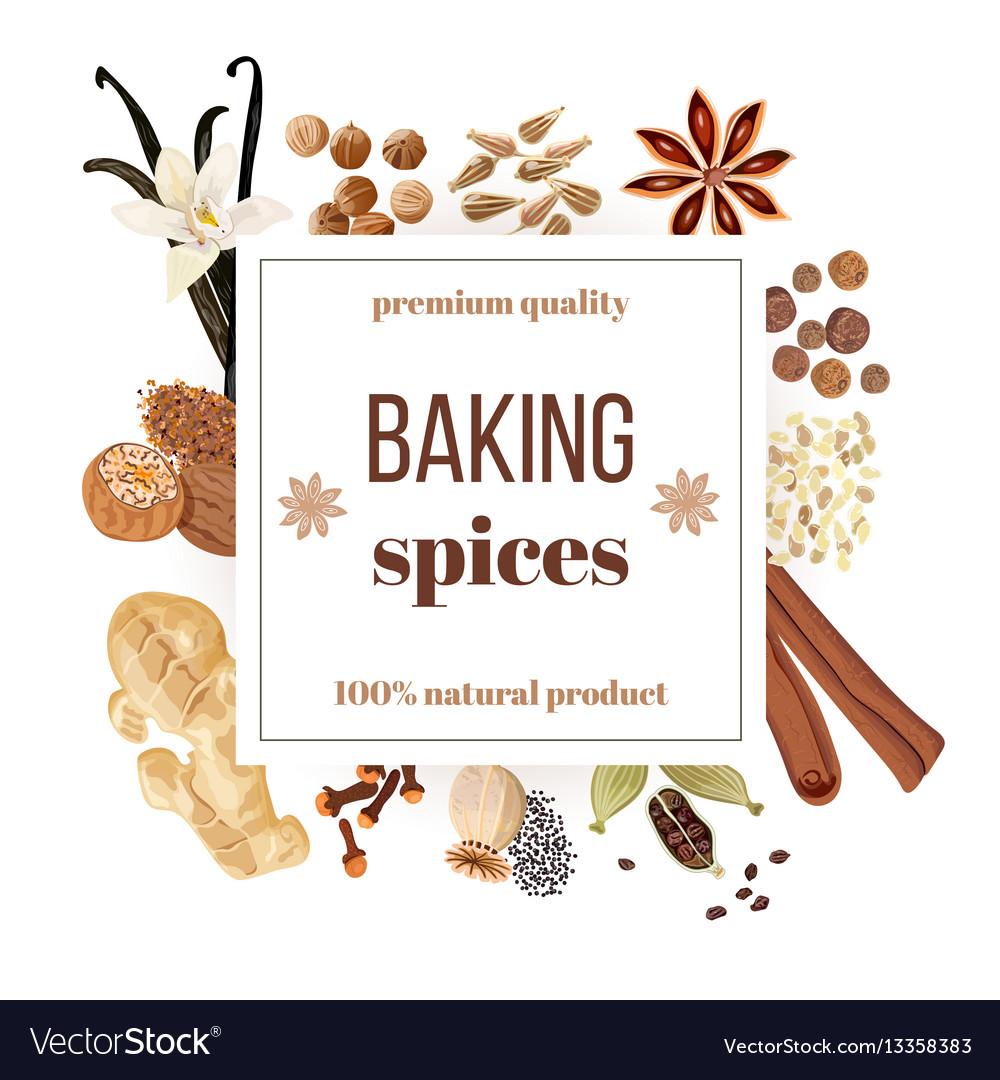 Backing spices big set under squire emblem vector image