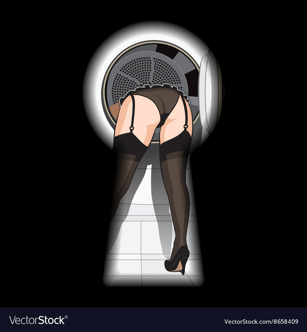Washing machine and sexy woman in keyhole vector image