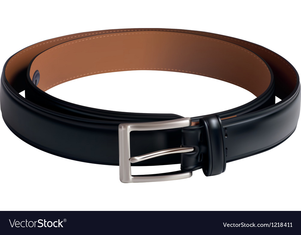 Men black belt vector image