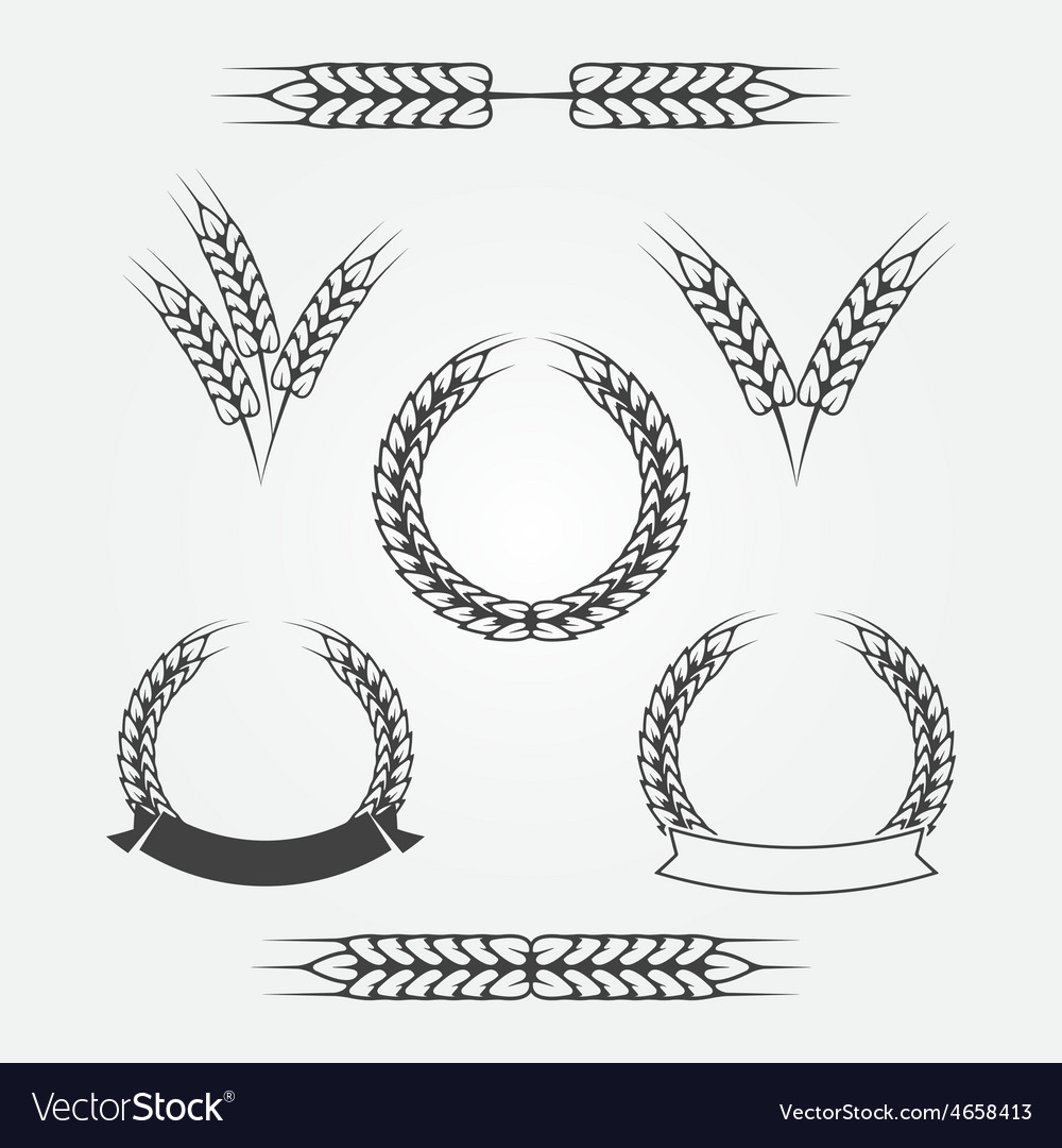 Wheat or rye icons set vector image