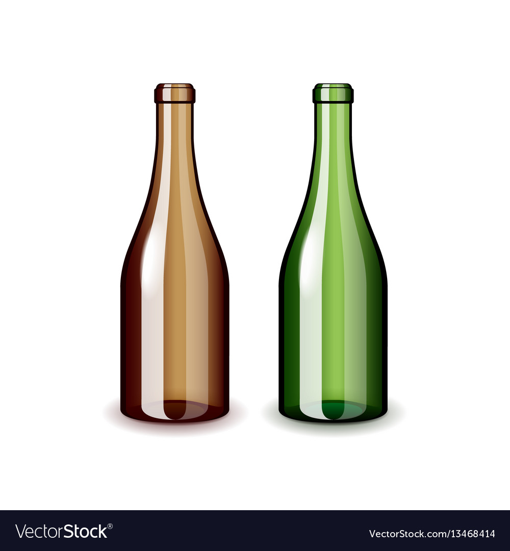 Two empty wine bottles isolated on white vector image