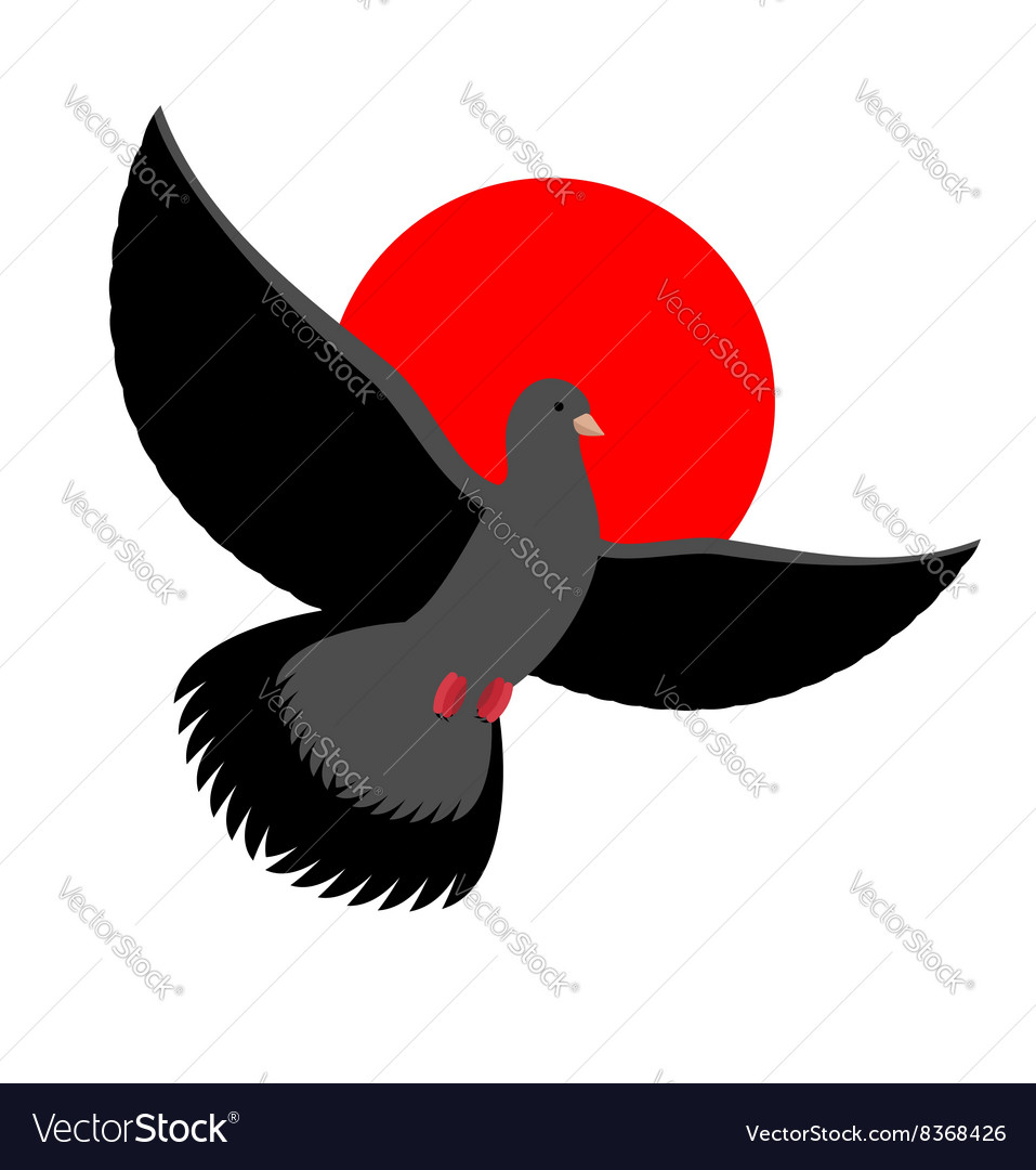 Black Dove symbol of sadness and mourning Flying vector image