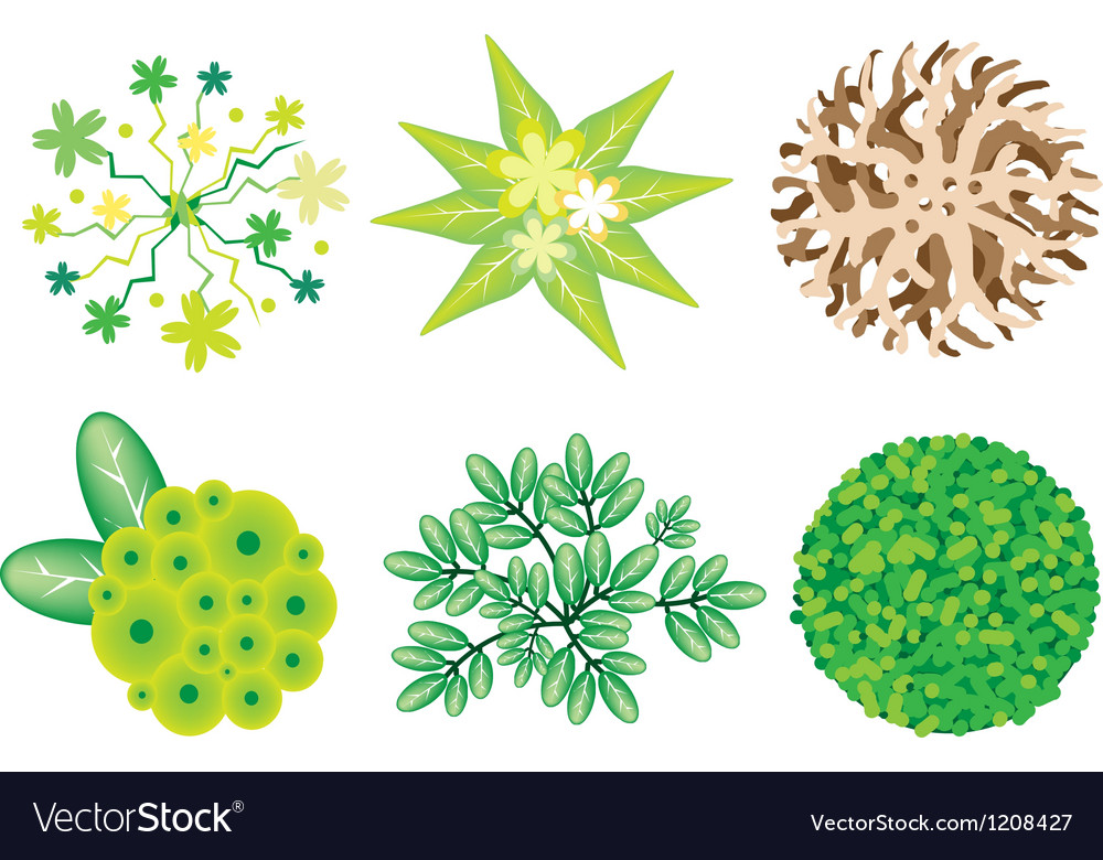 An Isometric Set of Trees and Plants vector image