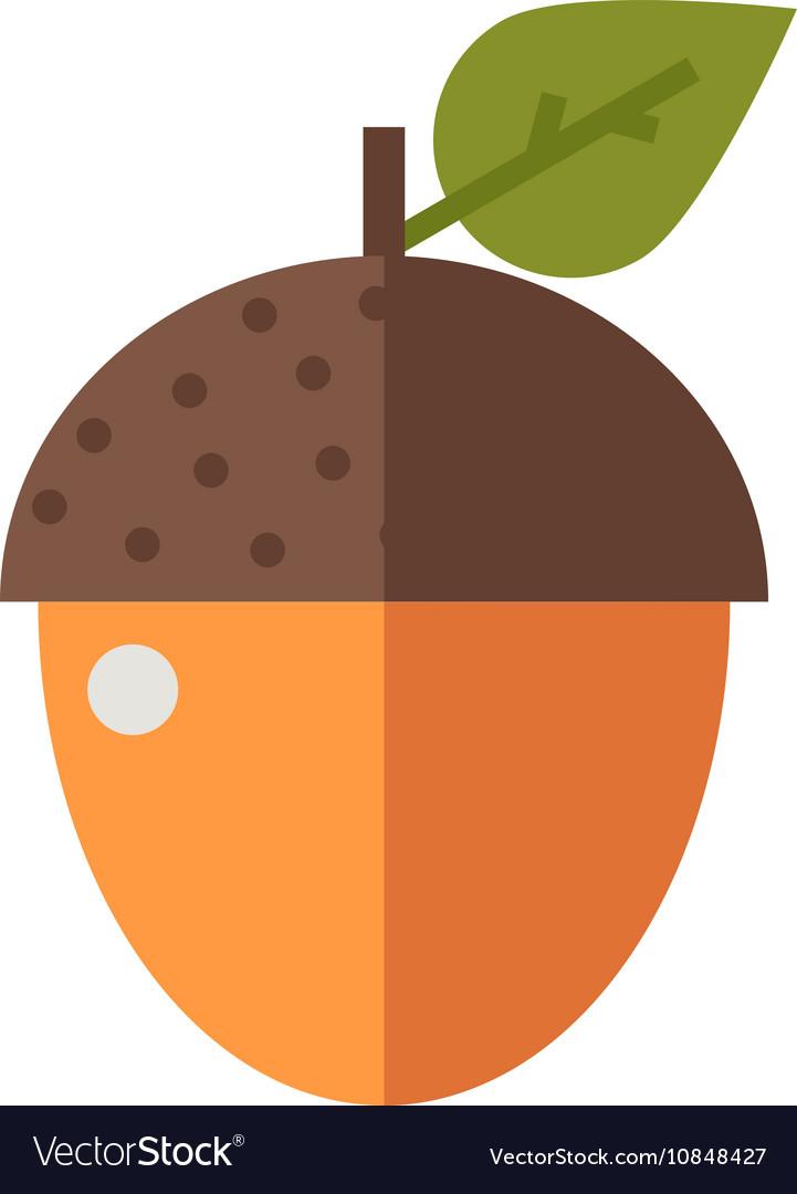 Arcon Nut Icon vector image