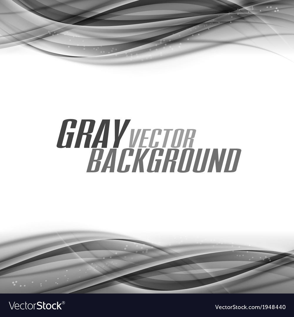 Abstract gray white center vector image