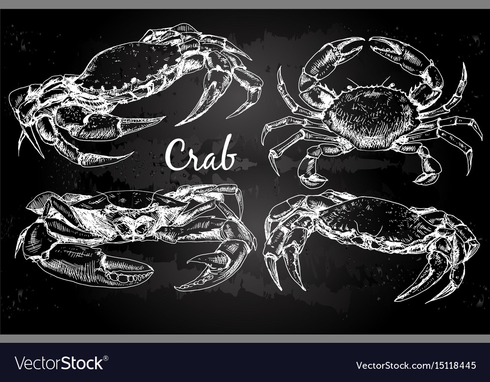 Hand drawn crabs vector image