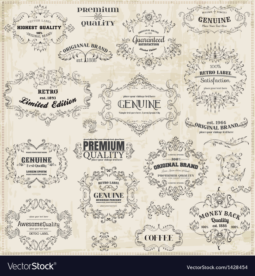 Calligraphic Design Elements and Page Decoration vector image