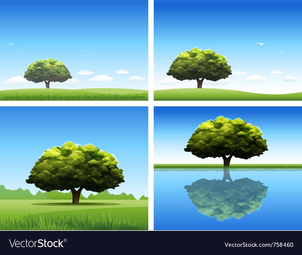 Oak tree background vector image