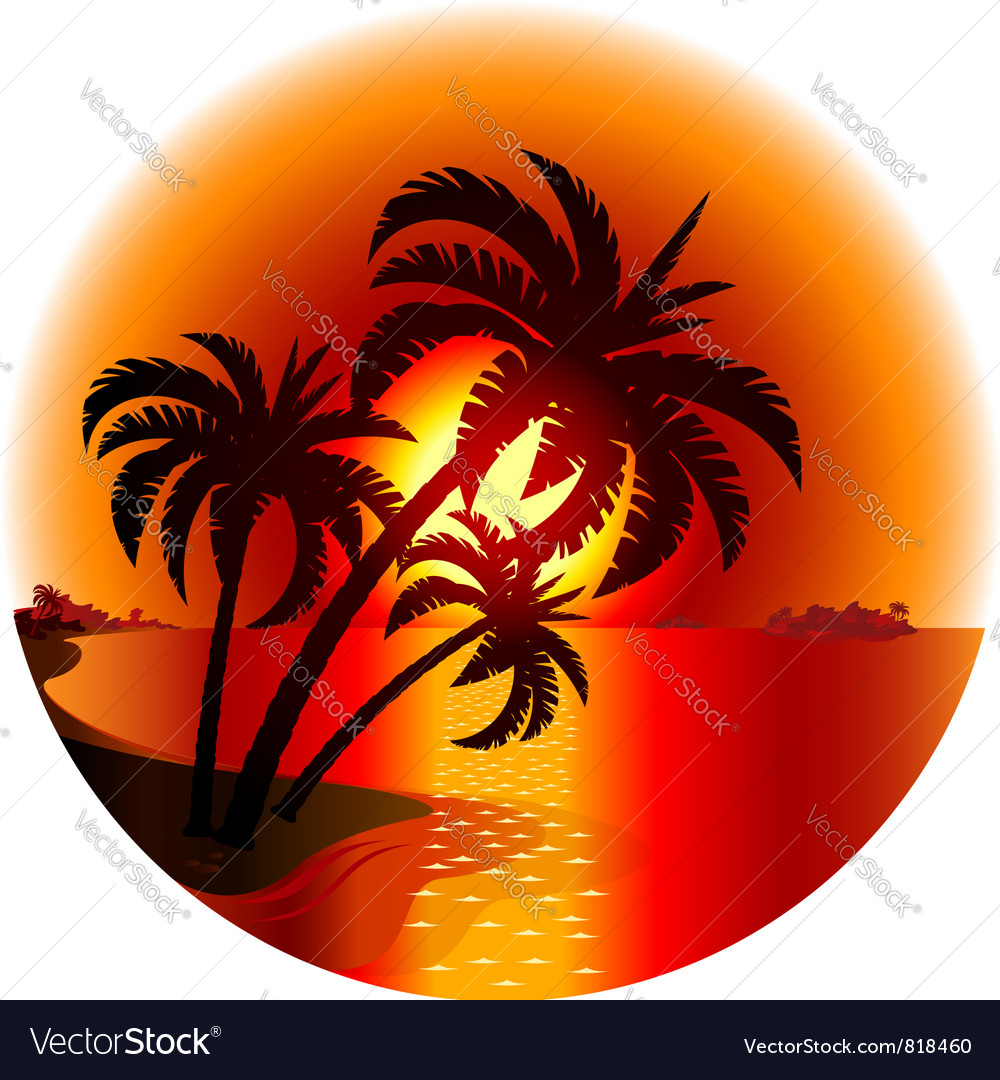 Sunset on a tropical island vector image