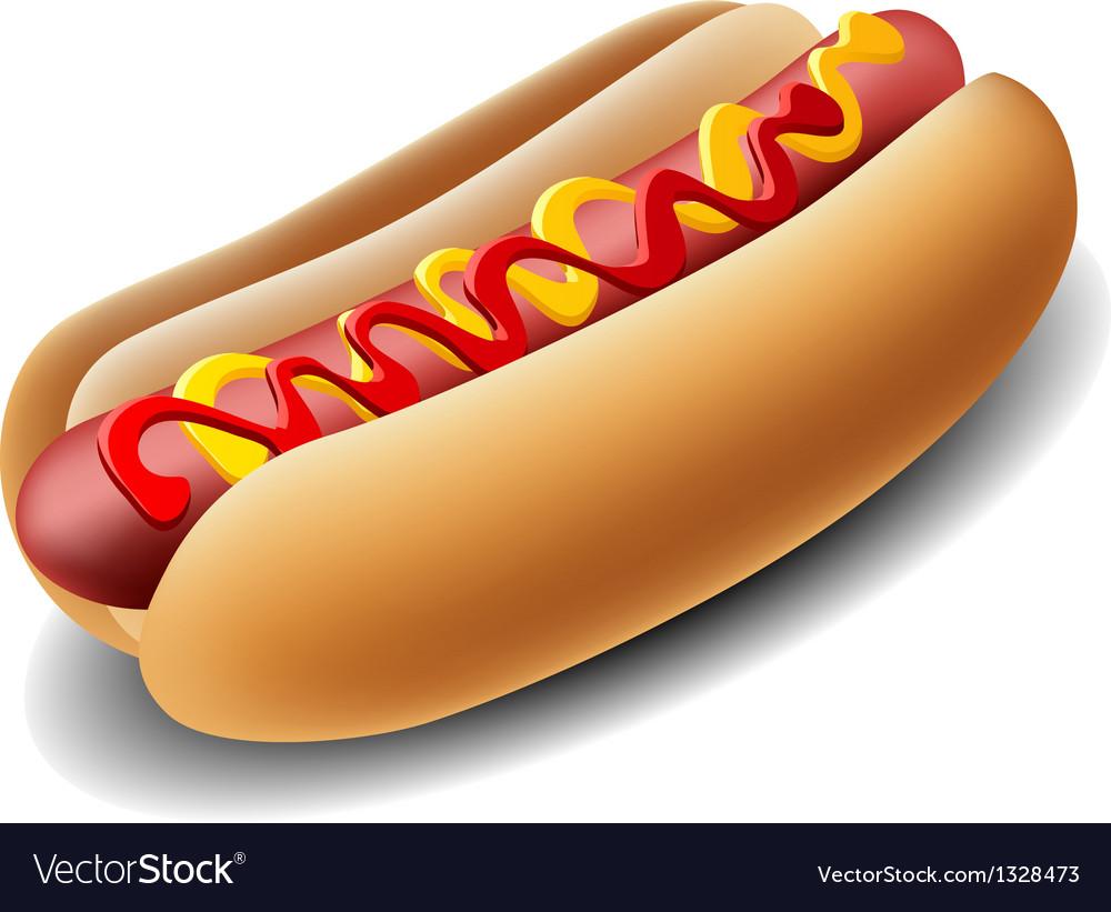 Realistic hotdog vector image