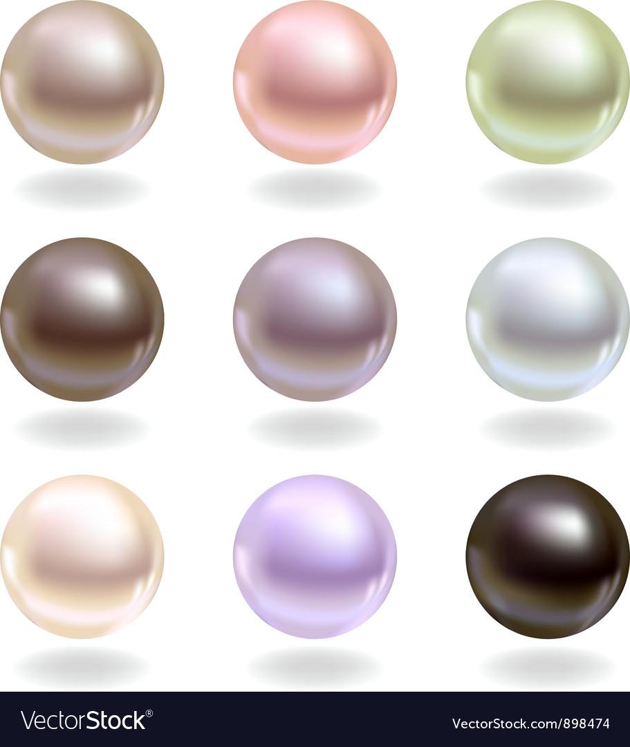 Spherical pearls vector image