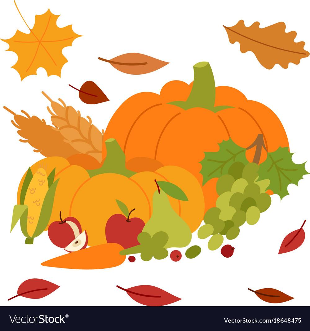 Fresh pumpkin thanksgiving decorative seasonal vector image