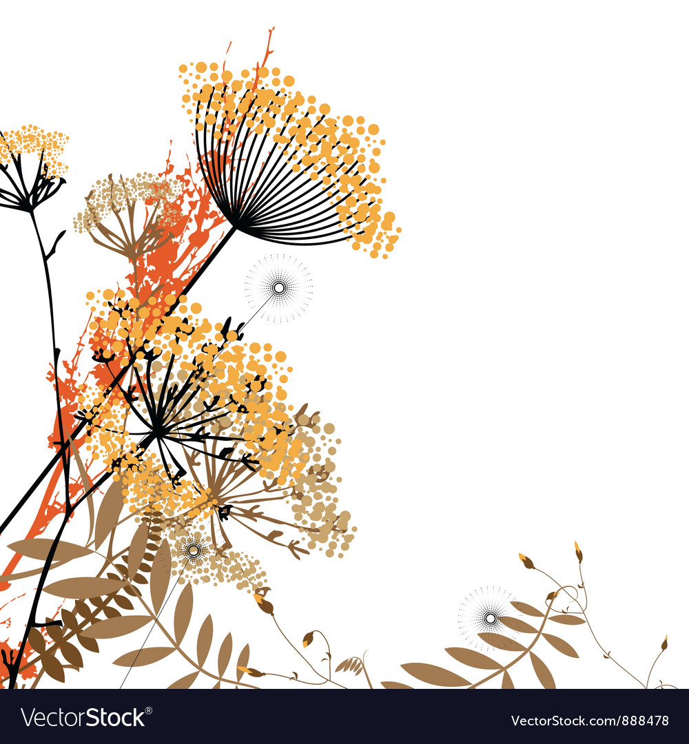 Arrangement of wild flowers vector image