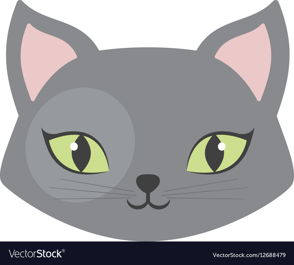 Gray cat green eyes pet animal vector image