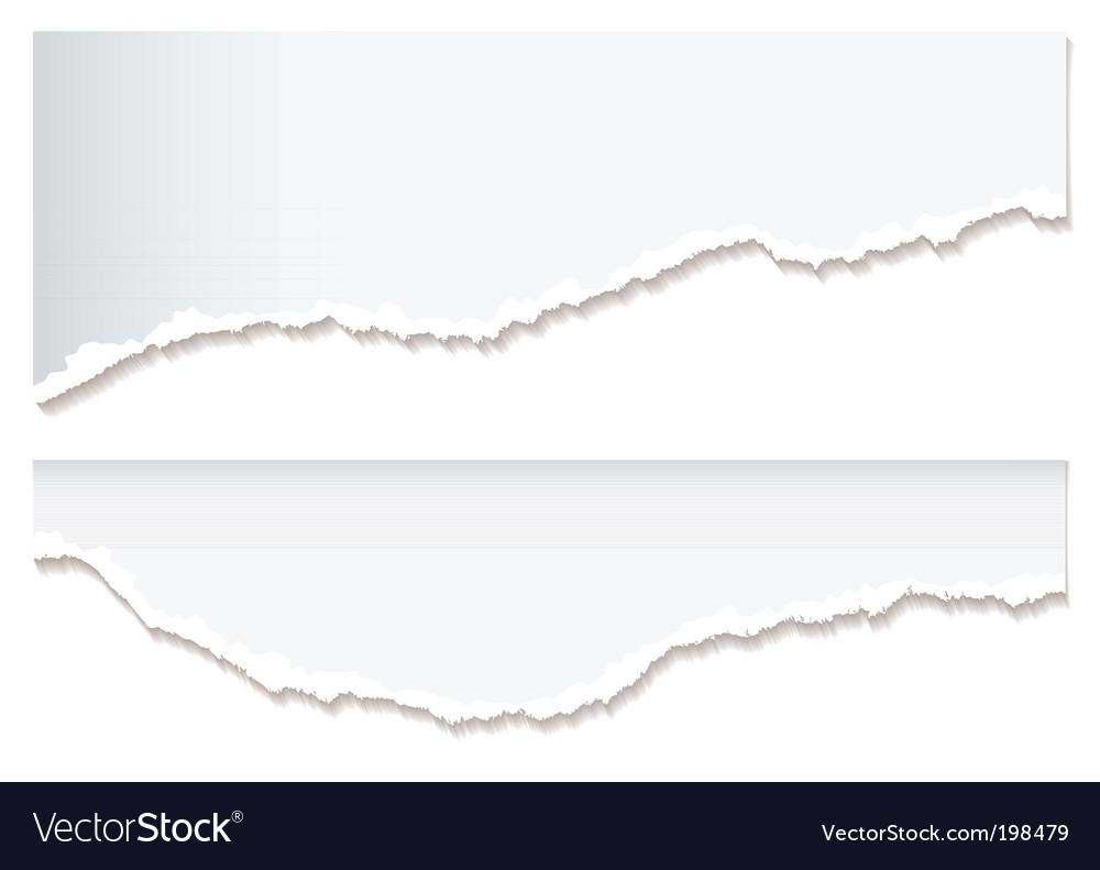 White paper rip edge vector image