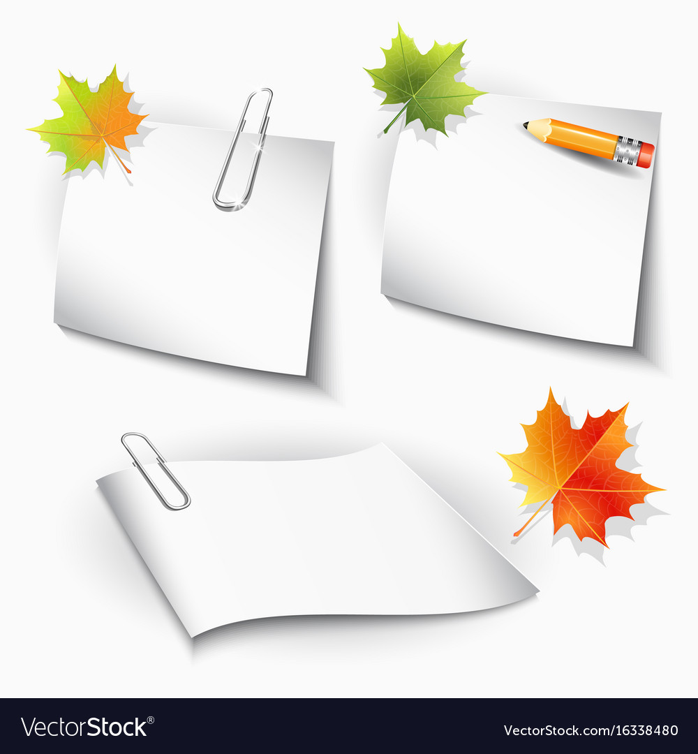 Paper clips and sheets pencil and autumn leaves vector image