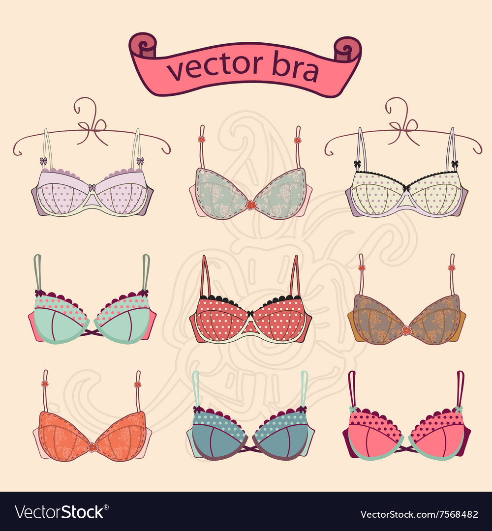 Set of sexy vintage different female fashion bra vector image