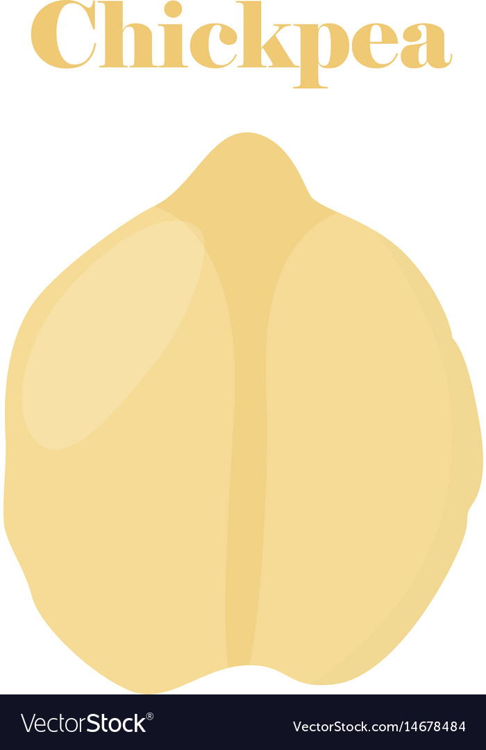 Chickpea bengal gram chick peas flat style vector image