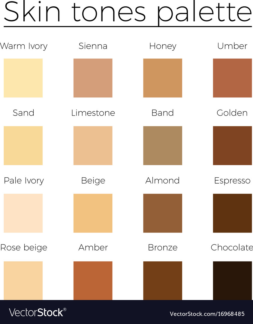Skin Tones Color Palette Royalty Free Vector Image