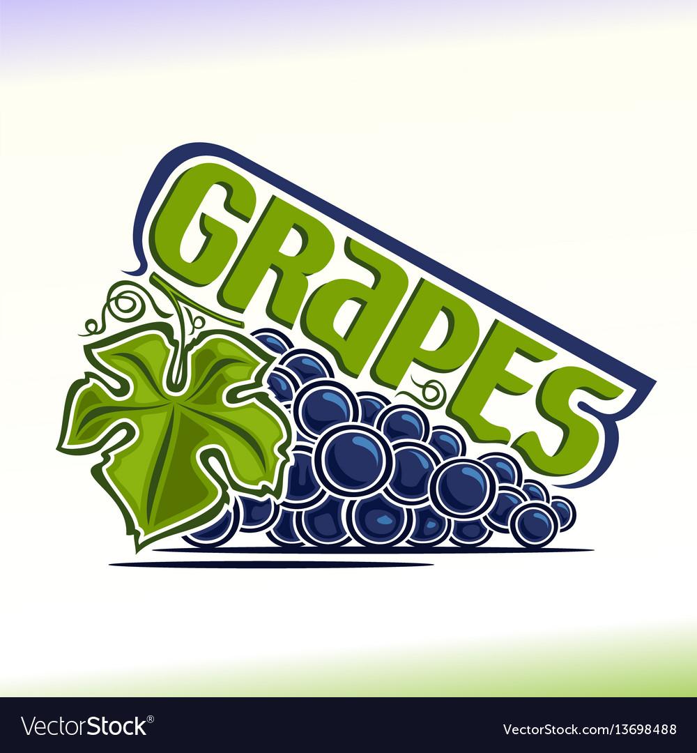 Grapes still life vector image