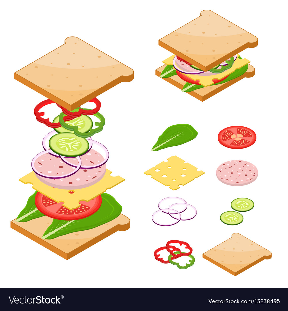 Ingredients for sandwiches fast food vector image