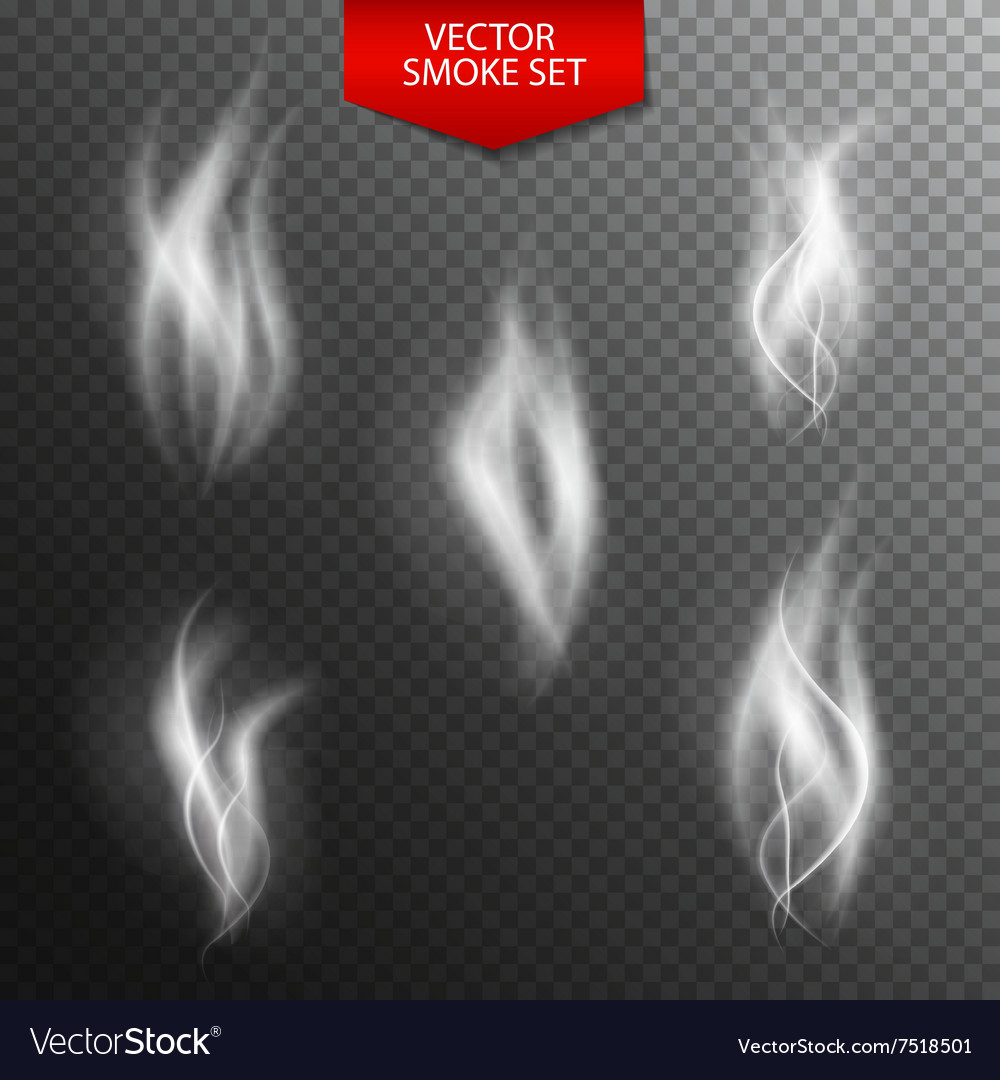 Naturalistic Smoke on Dark Transparent Background vector image