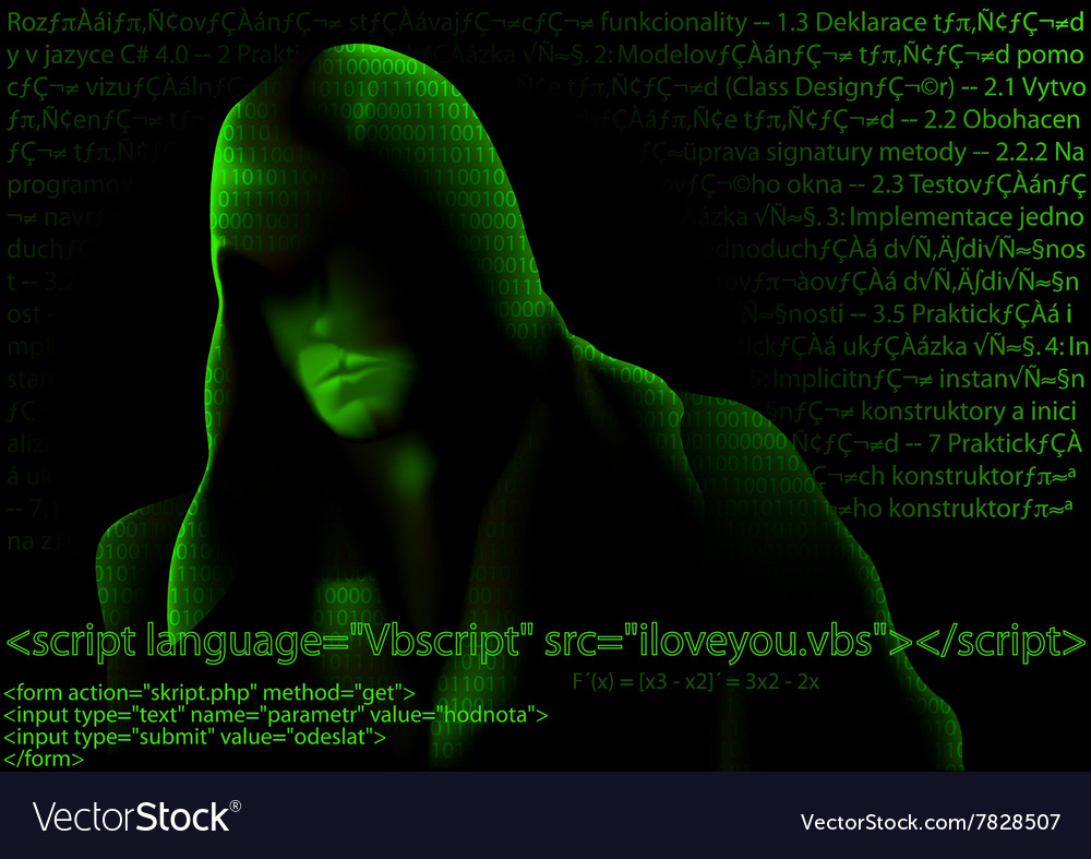 Hacker and Computer Codes vector image