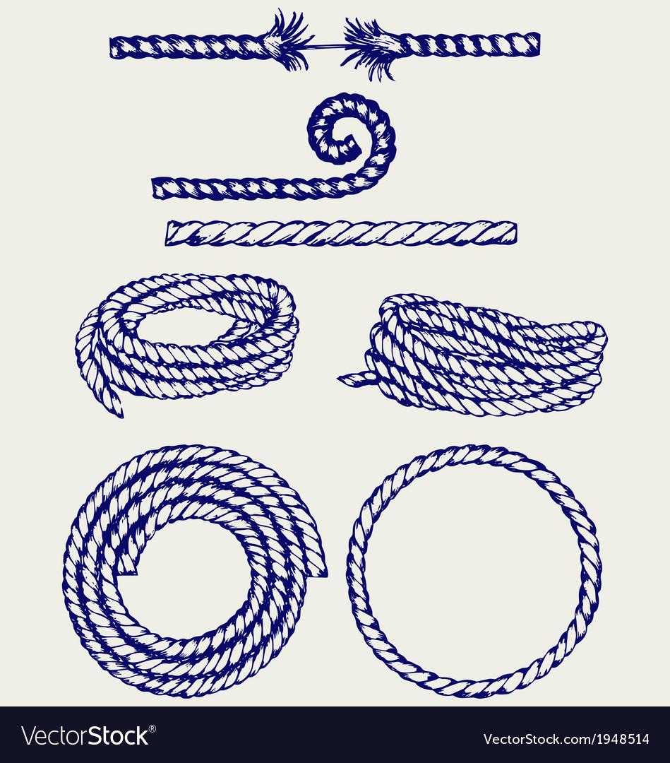 Nautical rope knots Vector Image