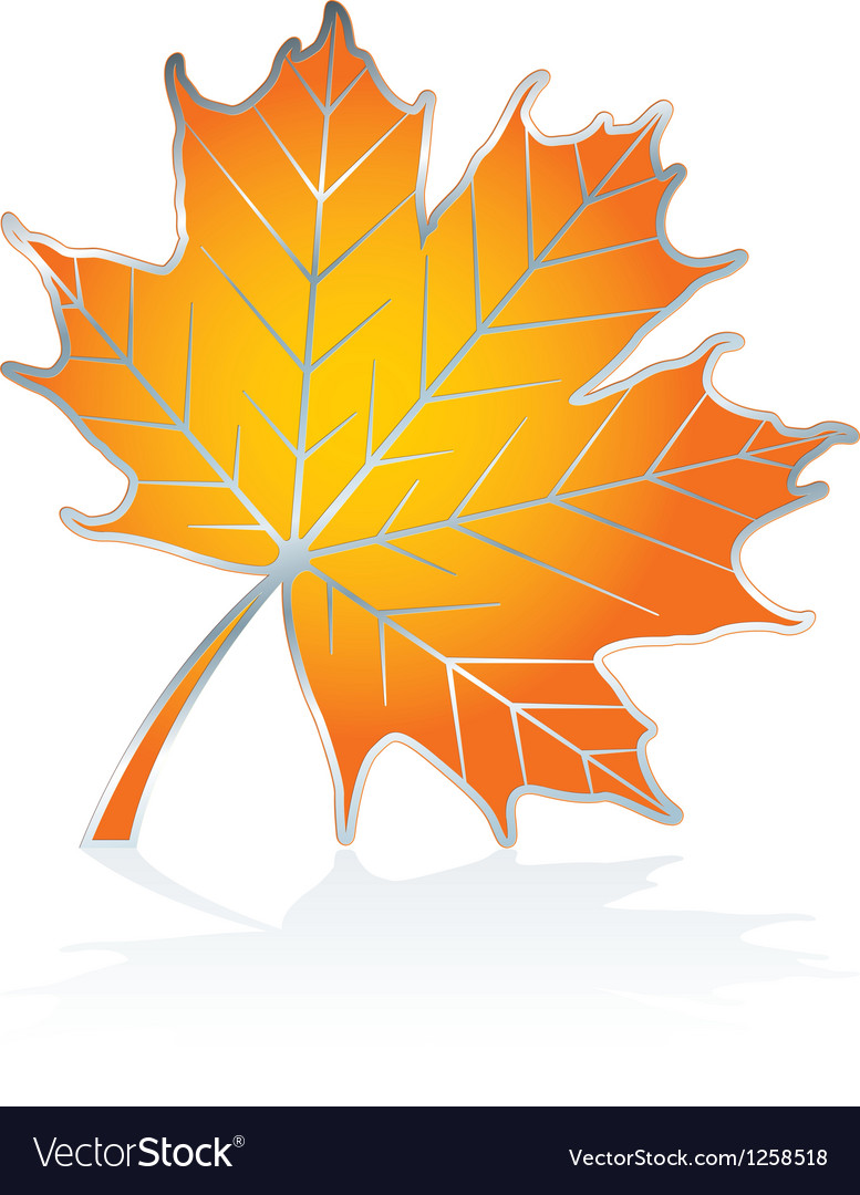 Icon maple leave Vector Image