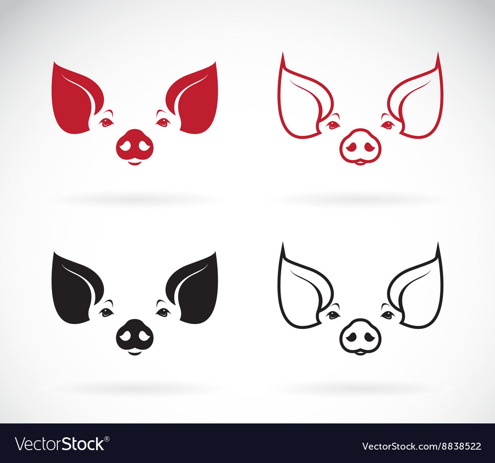 Image of an pig head vector image