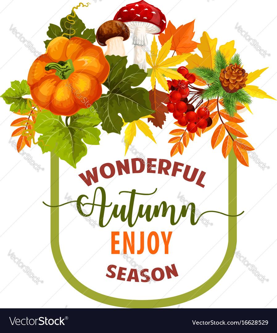 Autumn season maple leaf or pumpkin poster vector image