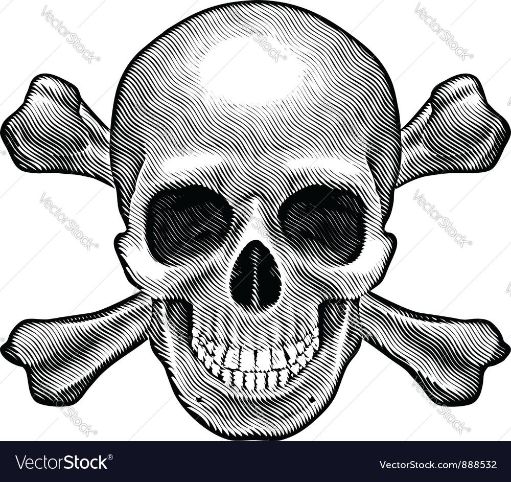 Skull and crossbones figure vector image