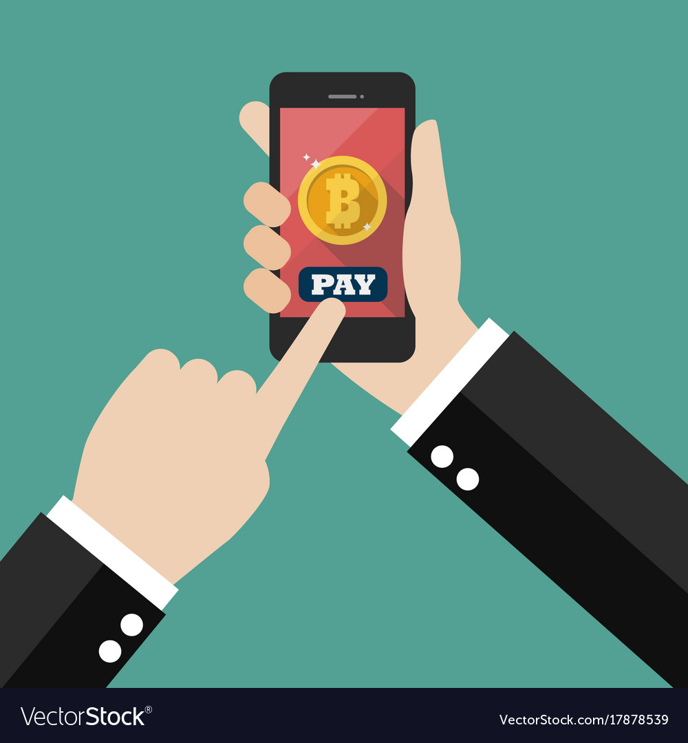 Online bitcoin payment concept vector image