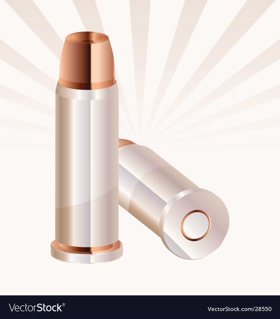 Ammunition vector image