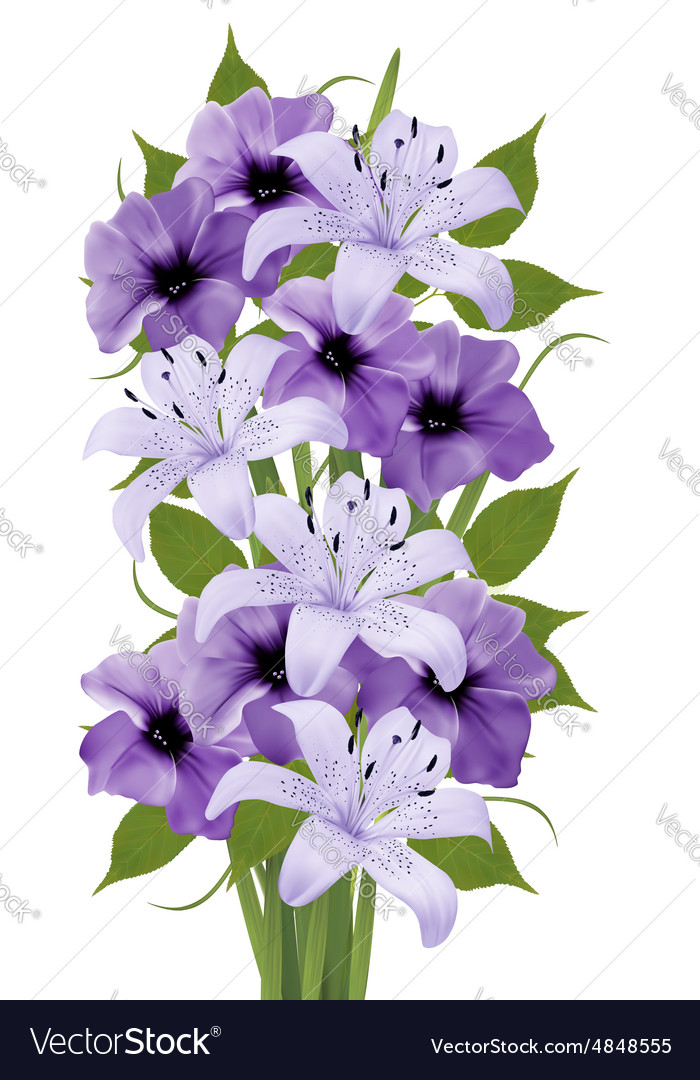 Holiday background with colorful beautiful flowers vector image