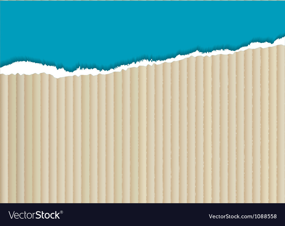 Cardboard torn edge vector image