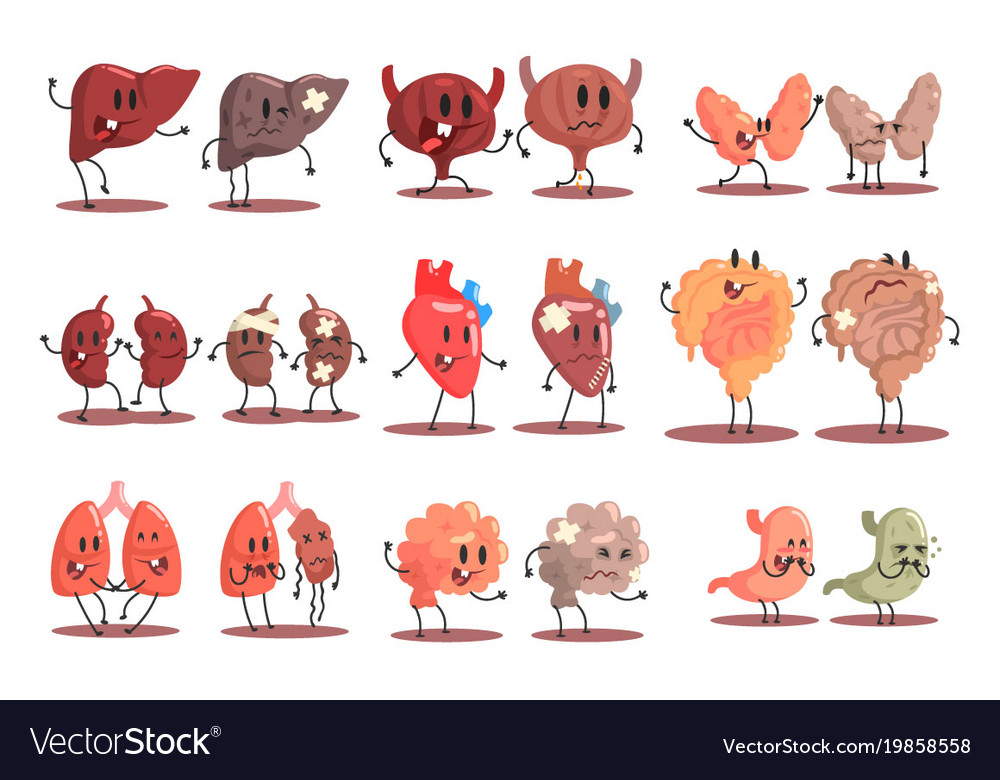 Human Internal Organs Healthy Vs Unhealthy Set Of Vector Image