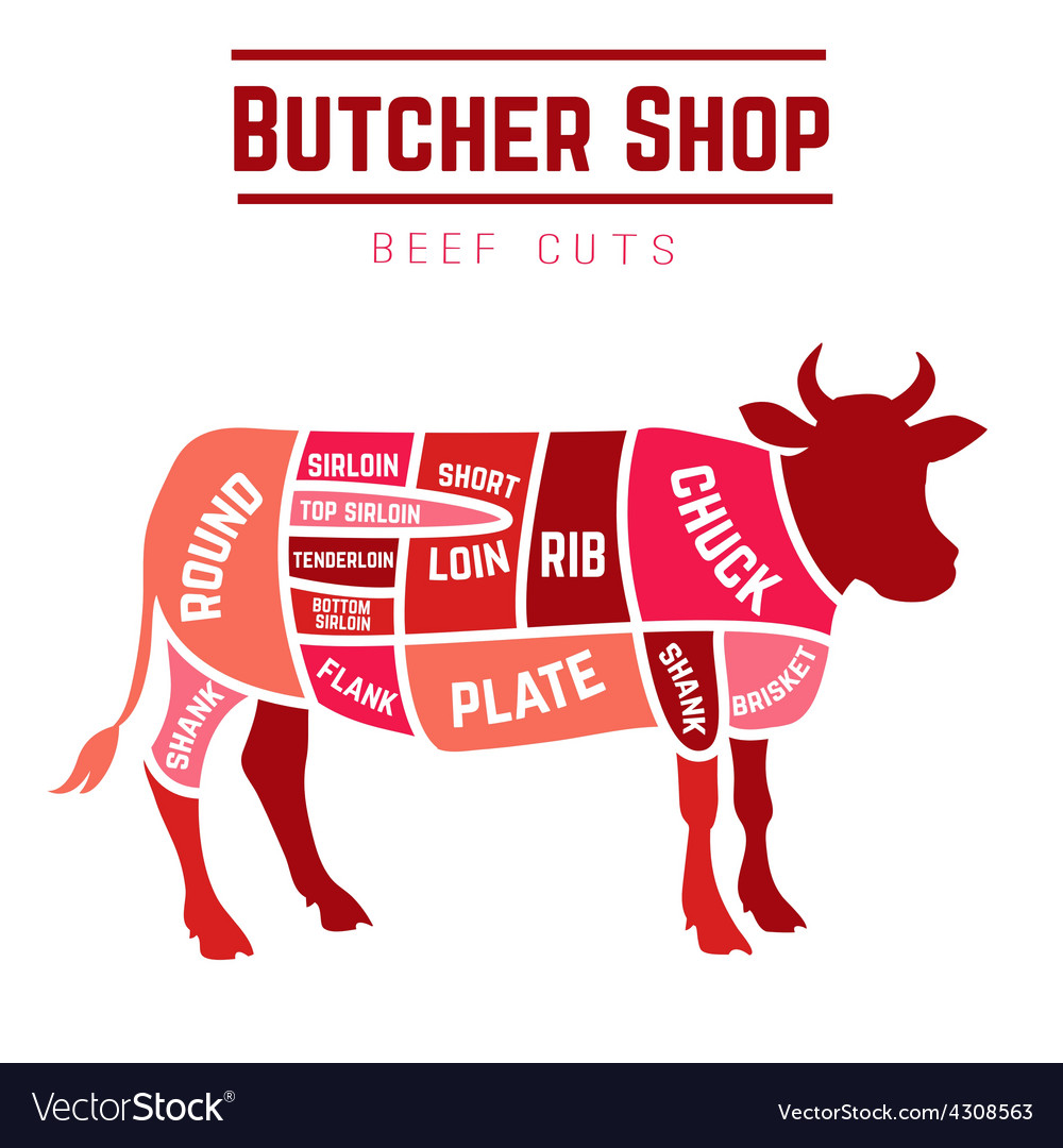 Cuts of beef diagram royalty free vector image cuts of beef diagram vector image pooptronica