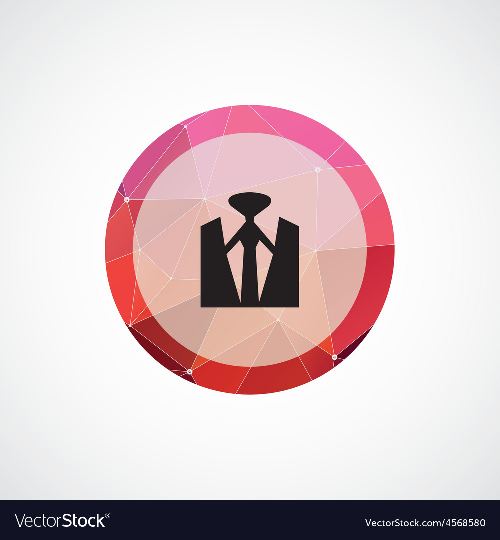 Shirt circle pink triangle background icon vector image