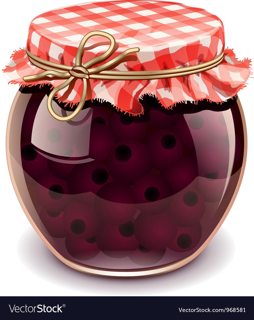 Cherry jam vector image