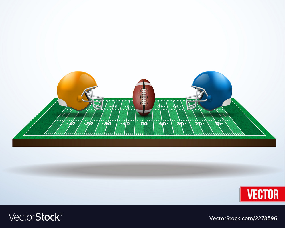 Symbol of a american football game on field vector image
