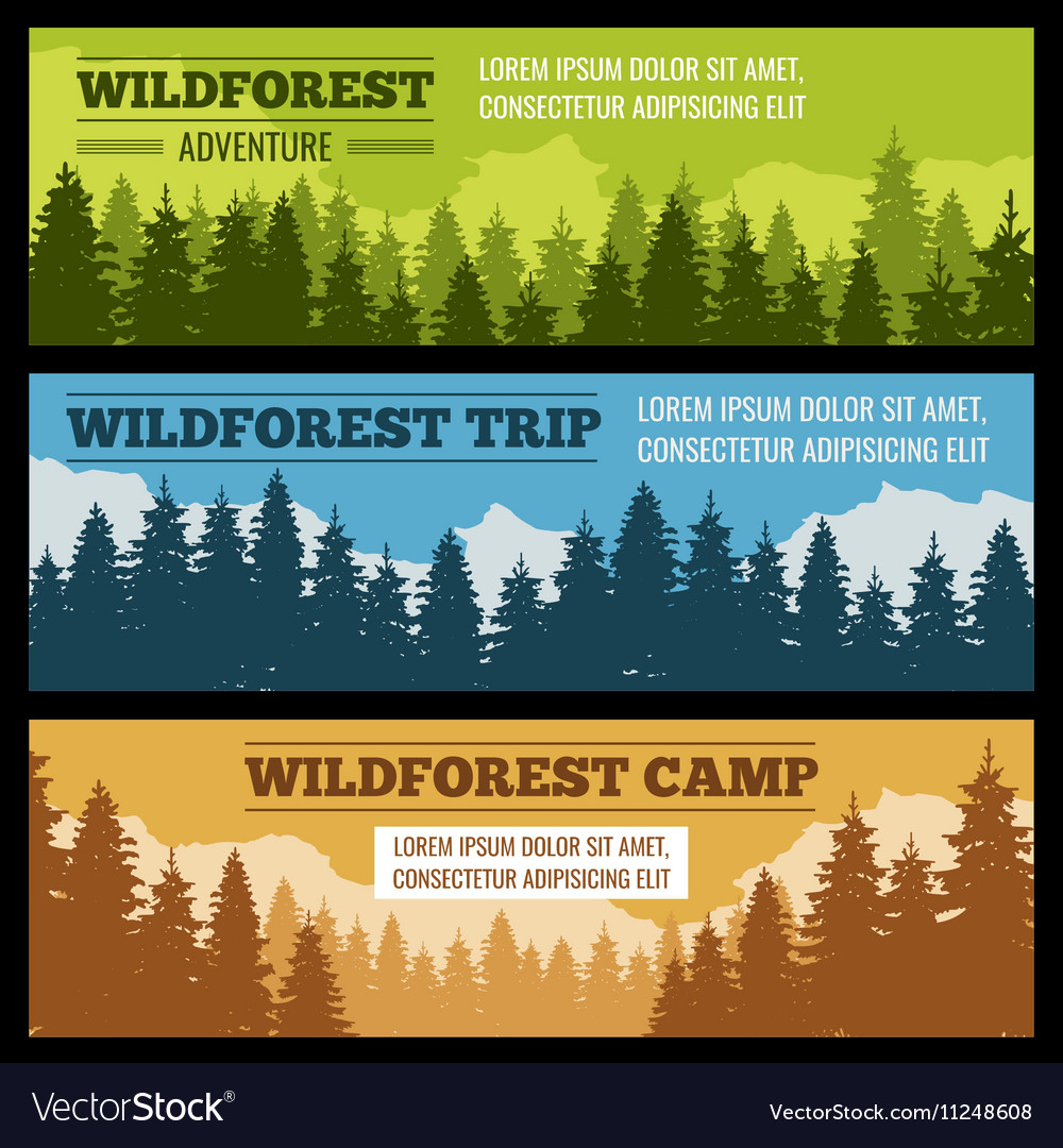 Journey camping banners set with pine tree vector image