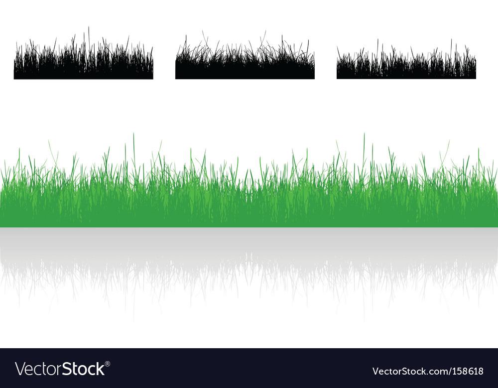 Set realistic grass vector image